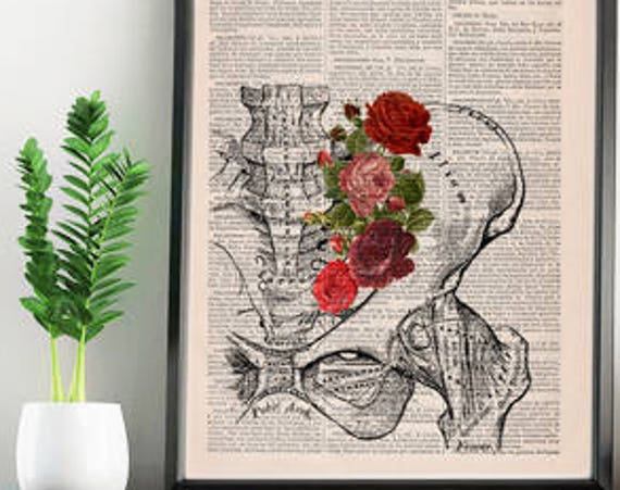 Springtime Pelvis Decorative Art, Flowers Nature Inspired Print Wall hanging print, Plevis Art flowers SKA136
