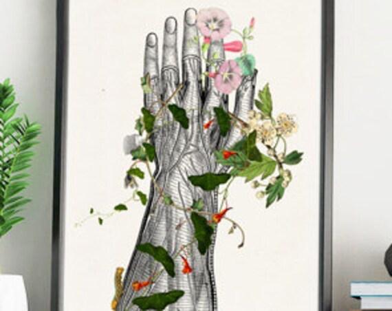 Hand section Study, Art Giclee Print, Anatomy art, Anatomical art, Wall art, Wall decor, Anatomy, Wholesale, Gift for doctor, SKA092WA4