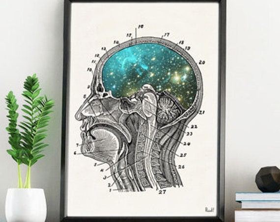 Cosmic Brain Anatomical art collage SKA112WA4
