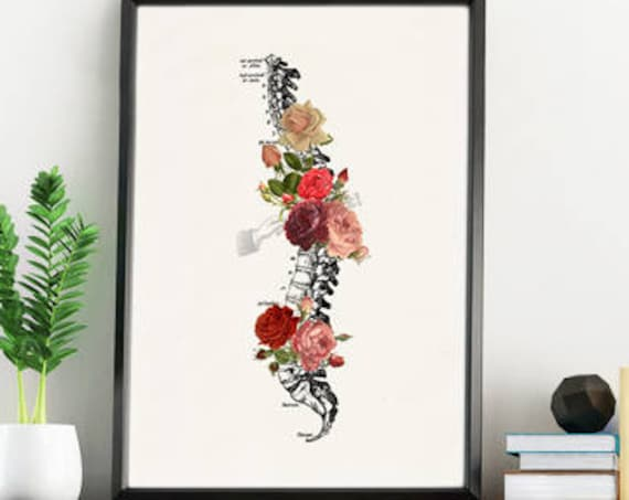 Springtime Roses Spine, Anatomy art, Anatomical art, Wall art, Wall decor, Medical gift, Gift for doctor, Wholesale, Trunk print, SKA137WA4