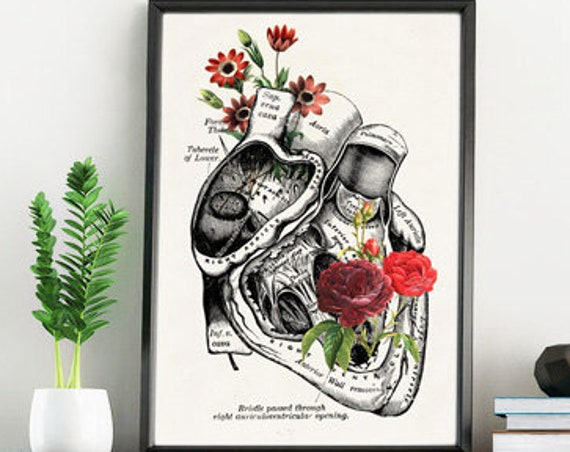 Flowery heart Anatomical art print SKA080WA4