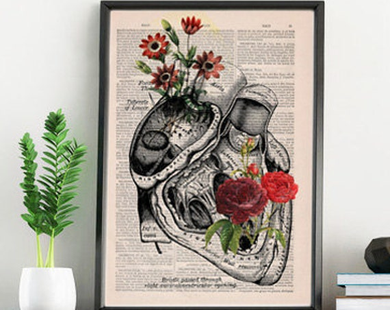 Flowery Heart human Anatomy Print on dictionary page gift , love wall art, human anatomy, science & anatomy  SKA080