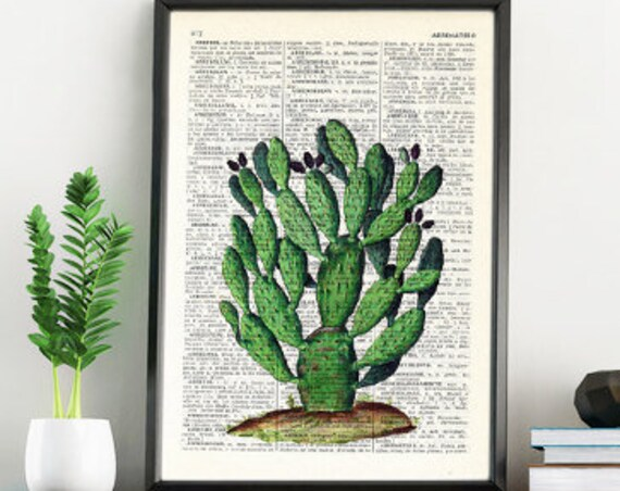 Vintage Book Print Dictionary or Encyclopedia Page Print- Book print Opuntia Cactus on Vintage Book art BFL037