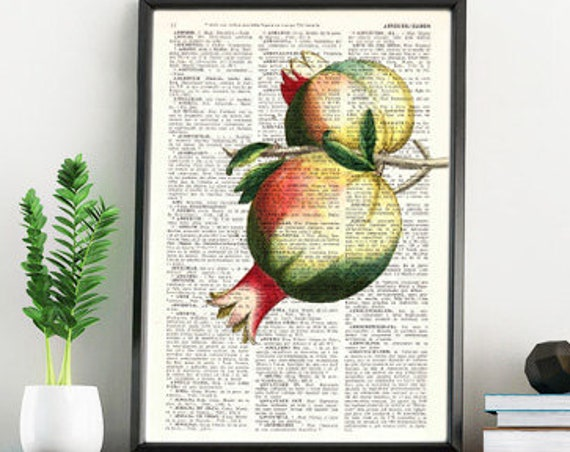 Pomegranate Wall decor giclee art print Pomegranate Fruit Printed on Vintage Dictionary page, pomegranate BFL125