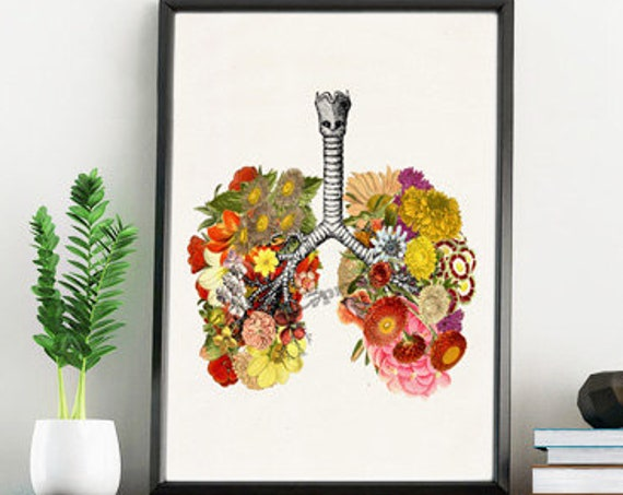 Flowery Lungs Anatomy Wall art poster SKA062WA4