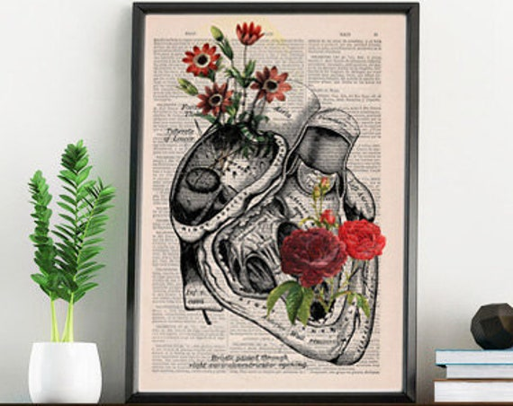 Flowery Heart human Anatomy Wall Art Print on dictionary page best choice for Christmas gifts SKA080b