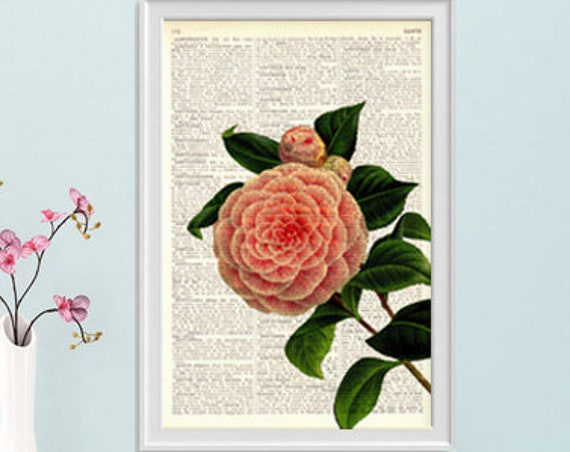 Christmas gifts for mom Camellia in soft pink printed on  Dictionary Page wall art home decor, wall hanging, flower Camellia decor BFL109