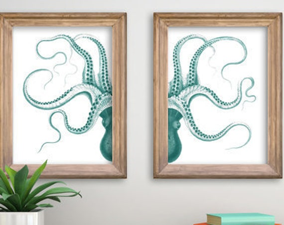 Seafoam Octopus in two parts, Octopus art, Wall art, Wall decor, Ocean Animal art Animal art SEA220WA3