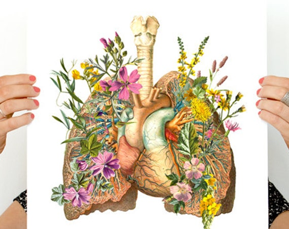 Christmas gifts Human Lungs with wild flowers, anatomy art, wall art, wall decor, poster, anatomy poster,  medical student gift SKA099WA3
