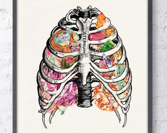 Human Anatomy Rib cage with precious jewelry stones poster SKA133WA4