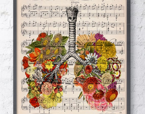 Lungs with flowers over music sheet Love gift aniversary gift, Music student gift, Girlfriend gift, SKA062MSL