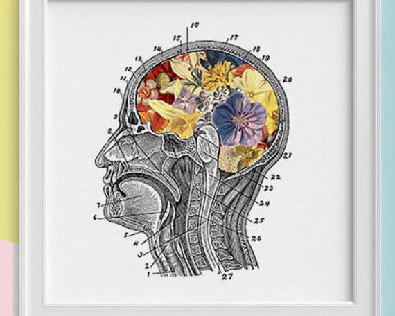 Flowery Brain Print, wall art Human anatomy print Science student gift Human skull art print Anatomy and flowers SKA053SQ1