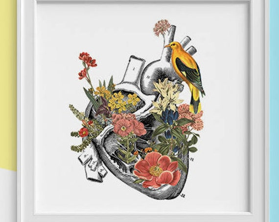 Human Heart with yellow bird Print, Science student gift, Human heart art print, Anatomy with flower SKA110SQ1