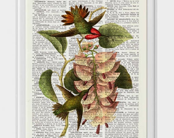 Christmas gifts for her Hummingbirds on exotic flowers Print Dictionary page Art Hummingbird illustration Upcycled book ANI251
