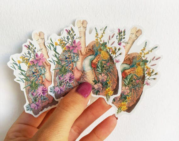 Lungs and Heart with wild flowers Anatomy stickers, laptop tickers, stickers, sticker, stickers laptop, anatomy stickers, anatomy art STC014