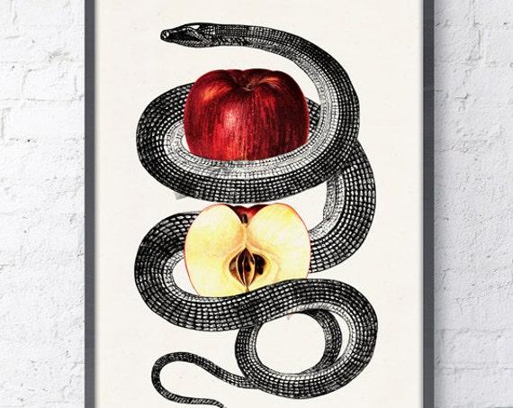 Red Temptation snake and apple Print , Wild art print, Anatomical art print, Erotic Art- Snake art print ANI202WA4