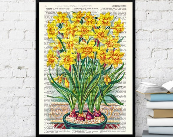 Christmas gifts for mom Wall art home decor. Narcisus Yellow flowers Book print Narcisus Flower Wall hanging floral. Yellow art decor BFL082