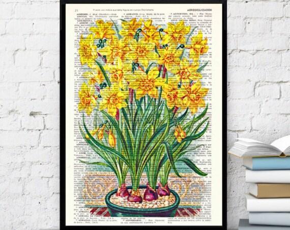 Wall art home decor. Narcisus Yellow flowers Book print Narcisus Flower Wall hanging floral. Yellow art decor BFL082