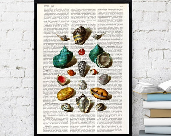 Sea Shell collage VIII Print on Vintage Dictionary Book Page perfect for Christmas gifts SEA027b