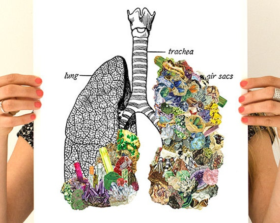 Human Lungs  with precious stones, anatomy art,  wall art, wall decor, poster, anatomy, no smoking,   SKA120WA3