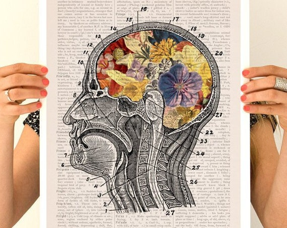 Flowery brain Poster, anatomy art, anatomy  poster, brain art, brain, anatomy, wall art,  poster,   SKA053PA3