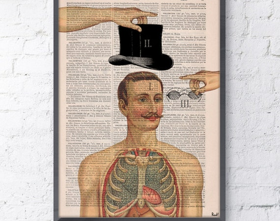 Anatomy of a Gentleman print, Dictionary Book Page Anatomy Art on Upcycled, giclee print, Home decor SKA113