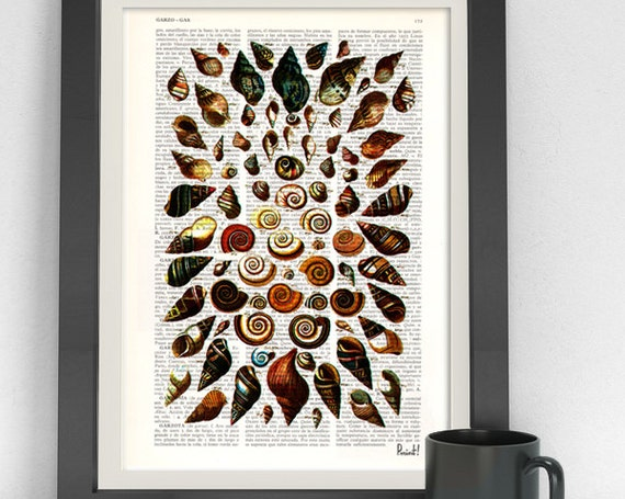 Vintage Book Print Dictionary or Encyclopedia Page Print Book print Shell collage V Print on Vintage SEA032
