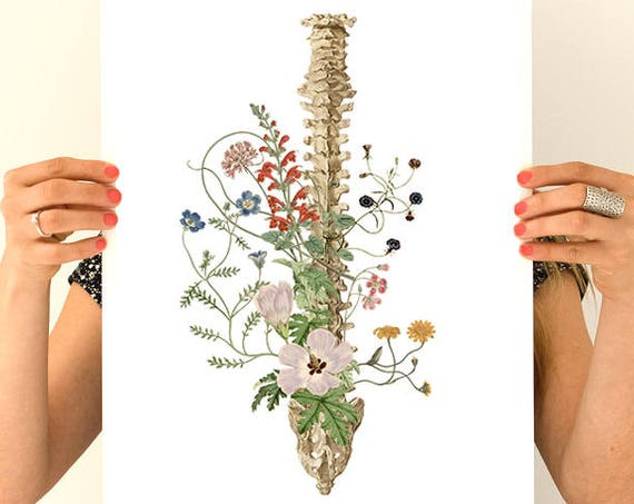 Christmas gifts for mom Soft colors wild flowers Spine,  anatomy art, wall art, wall decor, poster,anatomy poster, spine art SKA141WA3