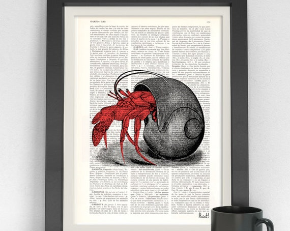 Hermit Crab in its Shell Dictionary page ocean life art wall art seashore house decor print Hermit crab SEA044