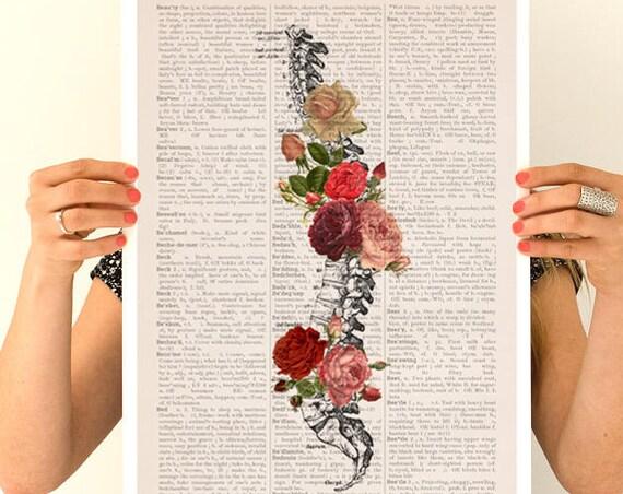 Springtime Spine,  anatomy art, wall art, wall decor, poster,anatomy poster,roses poster, vertebrae art SKA137PA3