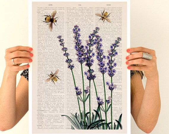 Bees over lavender flowers, Flower art, Eco friendly art, Wall art poster, Wall decor, Lavender Bees BFL117PA3