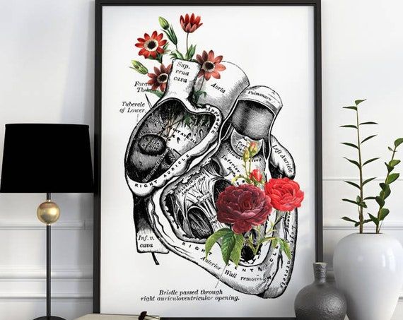 Flowery Heart, anatomy art, wall art, wall decor, poster, anatomy, anatomy poster, science, medical art, doctor gift, human heart  SKA080WA3