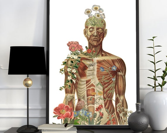Nature is all around, anatomy art,  wall art, wall decor, anatomy, muscles art, medical art,  gift, SKA143WA3