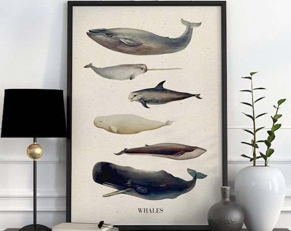 Christmas gifts for mom Whales A3 size poster, whales, whale poster, whale art, whale decor, animal decor, wall art, nursery, SEA218WA3