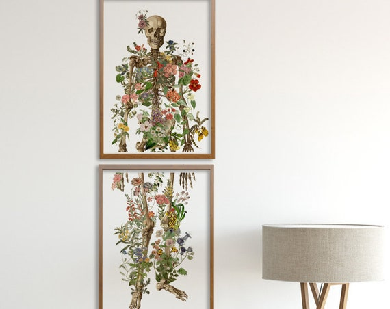 Christmas gifts for mom Full Human Skeleton in two parts. Anatomical decoration,  Anatomy art, Wall art, Gift for doctor Skull SKA149WA3