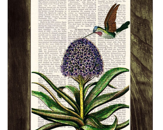 Hummingbird and hyacinth Wall Print the best choice as Cristmas gifts ANI121b