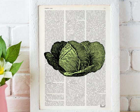 Cabbage Illustration Print on Vintage Dictionary Book art nature vegetable art home decor wall art BFL088