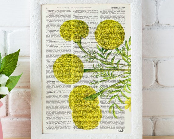 Christmas gifts Wall hanging Tagetes or African marigold flower Botanical studio print on Dictionary giclee  wall decor yellow BFL074