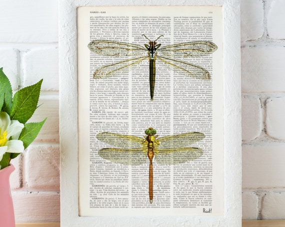 Christmas gifts for mom Dragonflies studio - Dictionary Book Print - Altered art on upcycled book pages BFL100