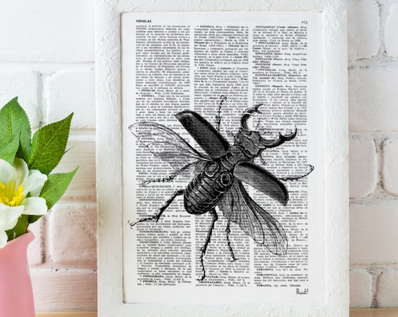 Wall decor Black Beetle Dictionary Print Altered art book pages art insect print decor poster print, wall beetle BPBB05