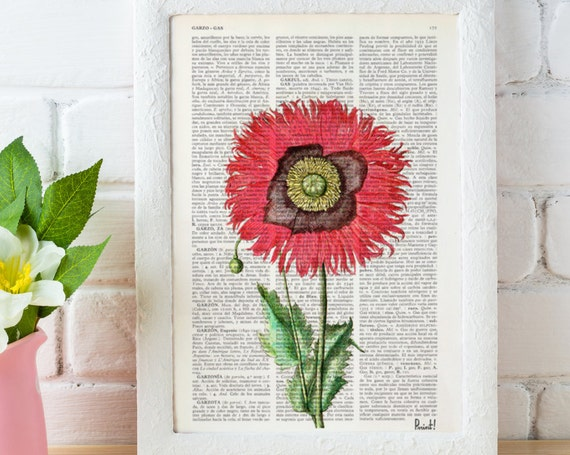 Vintage Book Print Dictionary or Encyclopedia Page Print Book print Poppy Flower Botanical studio print BFL075