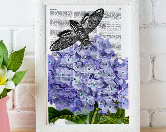 Vintage Book Print Dictionary or Encyclopedia Page Print Moth over Hidrangea print Book art BFL070