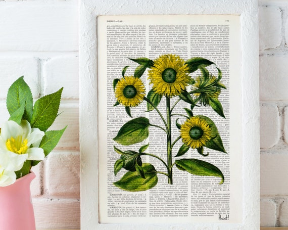 Christmas gifts for mom Illustration  Sunflower Plant Botanical  print on Vintage Dictionary Book page - Kitchen wall art BFL061
