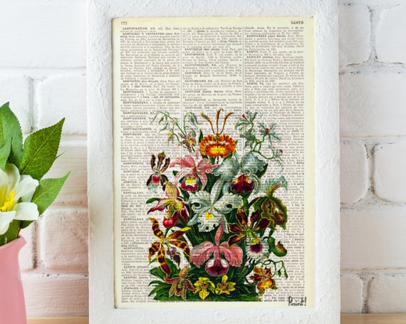 Christmas gifts for mom Wall art Orchids bouquet Book print Floral Bouquet Haeckel art print Wall decor Wall hanging Orchids flower BFL054