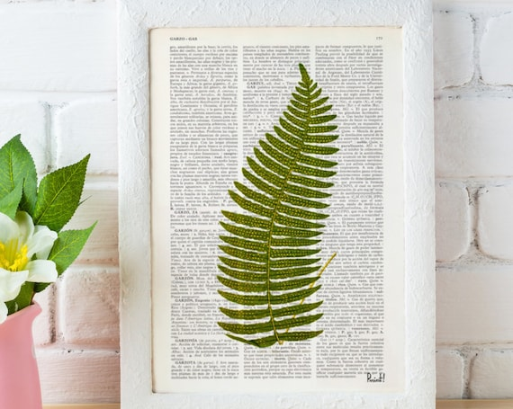Vintage Book Print Green fern  Printed on Vintage Dictionary Book wall art home decor BFL127