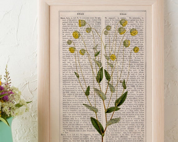 Wild flowers collection Print on Vintage Dictionary page Camomile Wild flora art naturalist illustration BFL220
