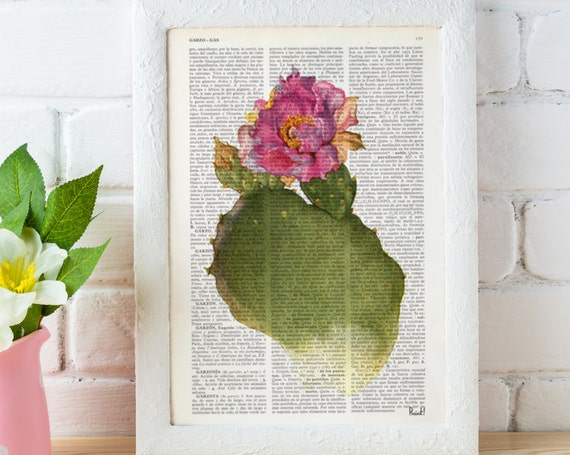 Opuntia cactus Flower dictionary Upcycled art  Printed on Vintage Dictionary Book page.wall art home decor BFL111