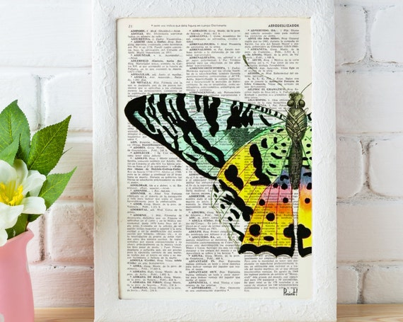 Colorful Butterfly detail Book print art perfect for gifts  BFL102b
