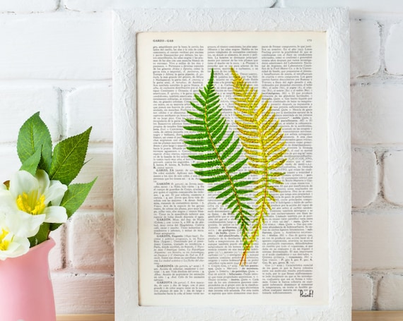 Vintage Book Print Green fern n02  Printed on Vintage Dictionary Book wall art home decor BFL126