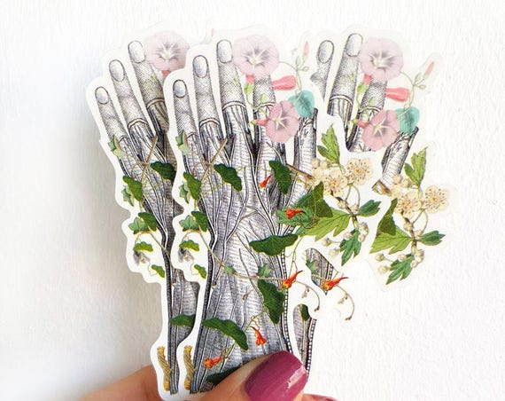 Human Anatomy hand with flowers stickers set, perfect gift for medical student  STC017
